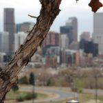 Denver-Blur